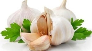 Rub gently with Garlic Cloves